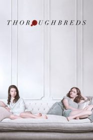 Thoroughbreds